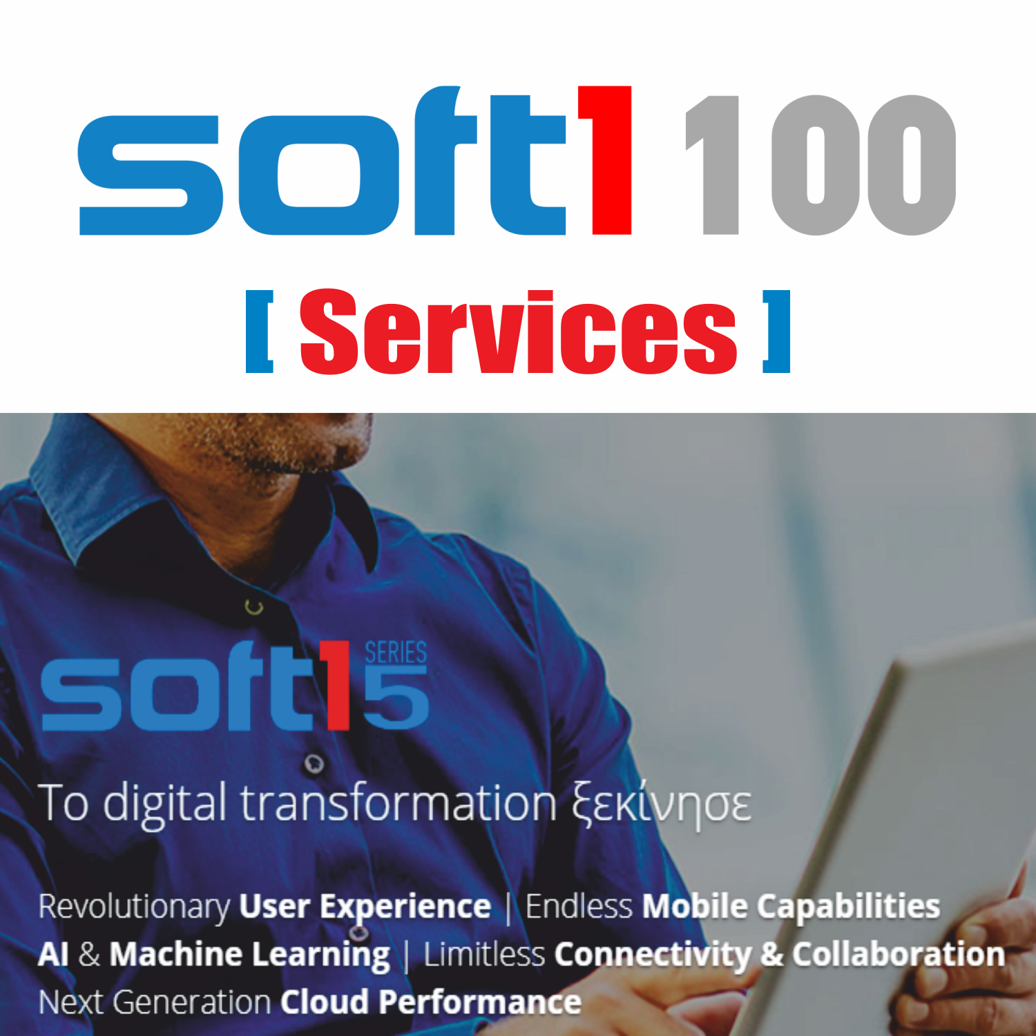 Soft1 Classic Edition ERP Services